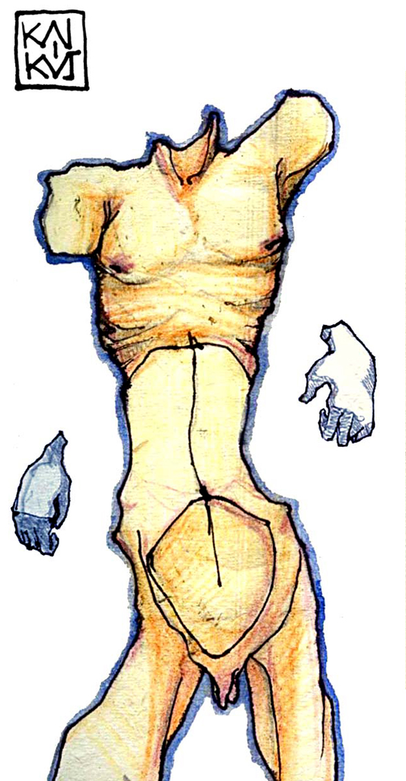 anatomy 2011 Mister Kaikus