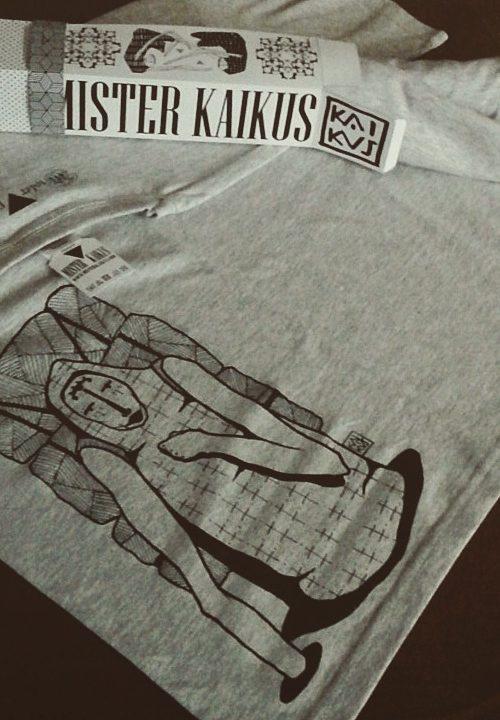T- Shirt BOXES 2014 Mister Kaikus